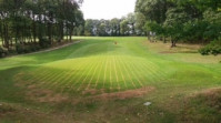 Shelton's Greens Drainage Transforms Ross-on-Wye Golf Club